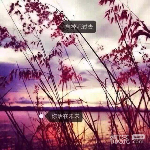 大自然的对白 微信唯美风景图片_伤感配图_微茶网