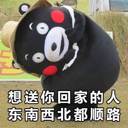 熊本熊谈恋爱系列微信表情包 说的很有道理!图片