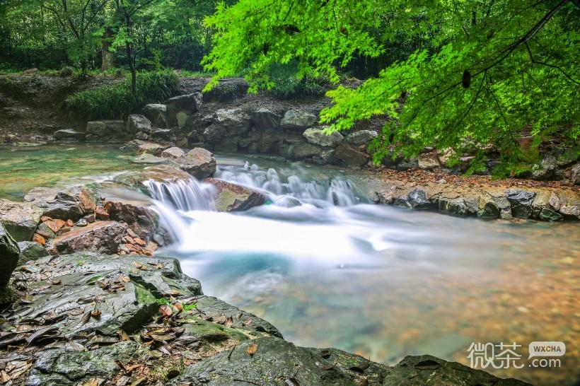 杭州九溪风景微信高清图片