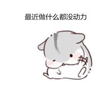 小仓鼠表情下载 小仓鼠微信表情下载 hamham小仓鼠表情下载 微茶网