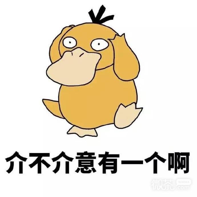 大肥鸭表情包_可达鸭你有没有对象表情包