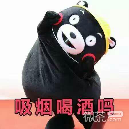 萌萌哒的熊本熊关心人表情包_可爱呆萌熊本熊微信表情