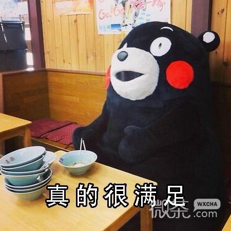 熊本熊真的很满足系列微信搞笑表情包图片