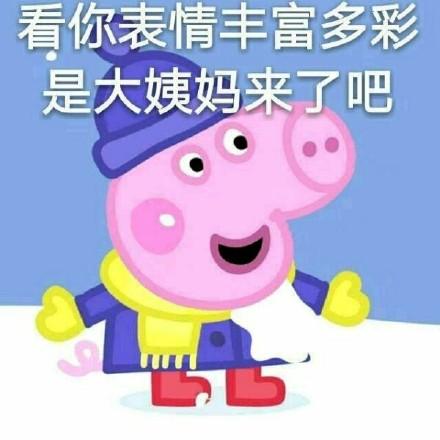 可爱爆笑小猪佩奇系列微信表情包合集下载图片