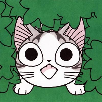 萌萌哒的甜甜私房猫微信头像合集下载