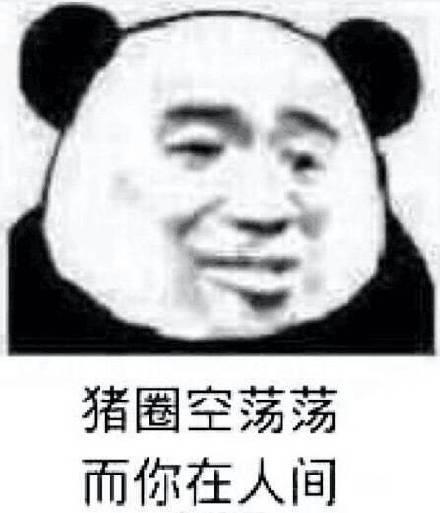 2018年五月微信精选熊猫头斗图表情包下载