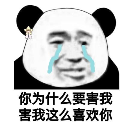 2018微信最新土味情话熊猫头表情包合集下载