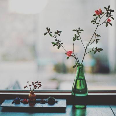 花藻与春风唯美微信头像_微信头像_微茶网