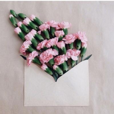 唯美花朵头像