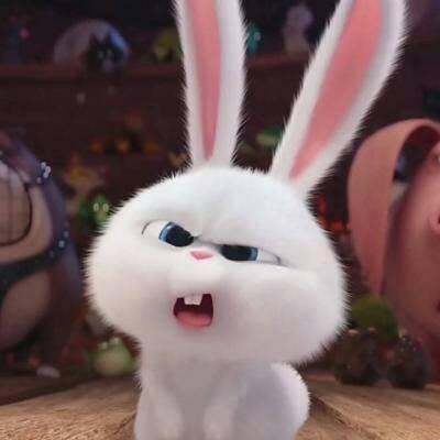 微信卡通化兔子头像_微信头像_微茶网