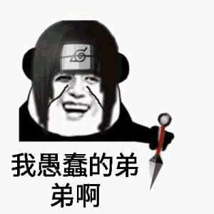 这是弟弟微信熊猫头搞笑表情包图片
