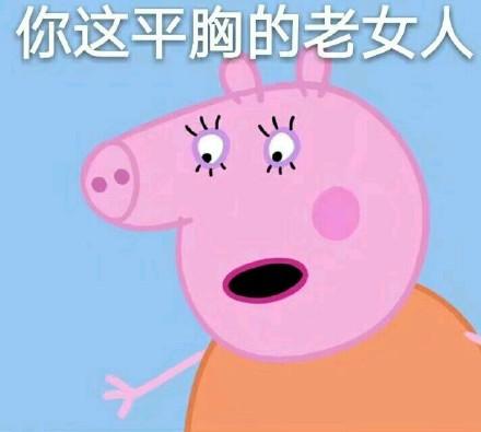 微信小猪佩奇恶搞表情包