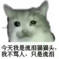 流泪猫流泪狗微信恶搞表情包图片