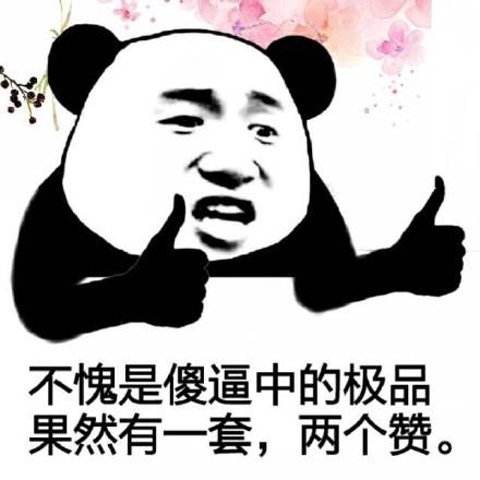 各位傻逼好!微信熊猫头恶搞表情包图片