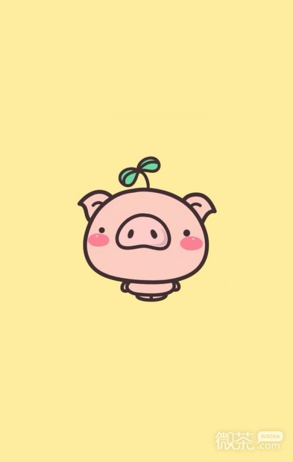 微信可爱卡通猪猪聊天背景