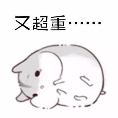 可爱仓鼠斗图微信表情包