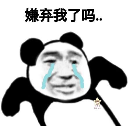 一套污污的熊猫头微信恶搞表情包