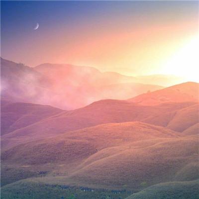 微信最新个性唯美风景静物头像
