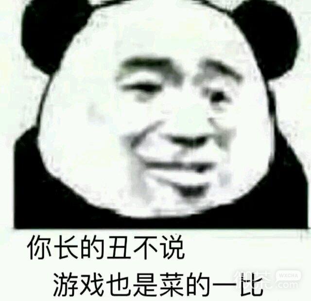 搞笑熊猫头斗图微信表情包