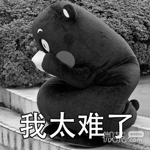 微信爆笑恶搞熊本熊我太难了表情包套图下载图片